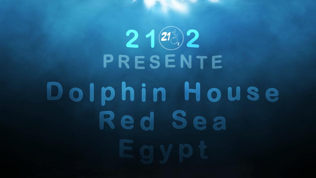 """Nager avec les dauphins au récif de Sataya un lieu nommé """"Dolphin House"""", Égypte 2018"""
