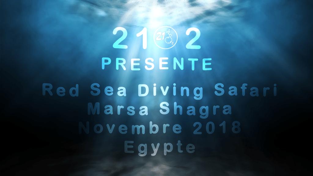 Égypte au Red Sea Diving Safari centre à Marsa Shagra en 2018